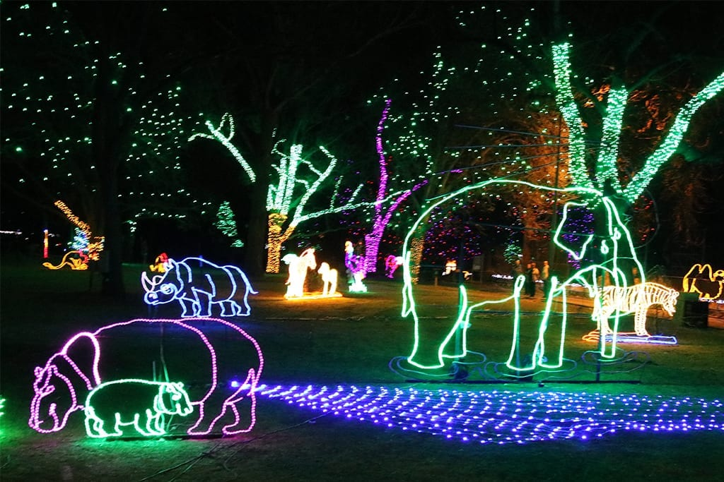 Zoo Lights Illuminated With Life Denver Zoo