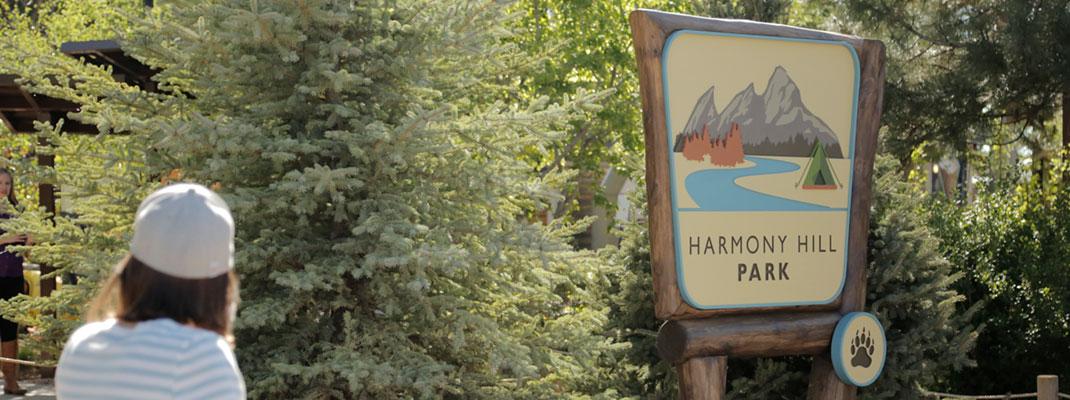 Harmony Hill Bear Habitat