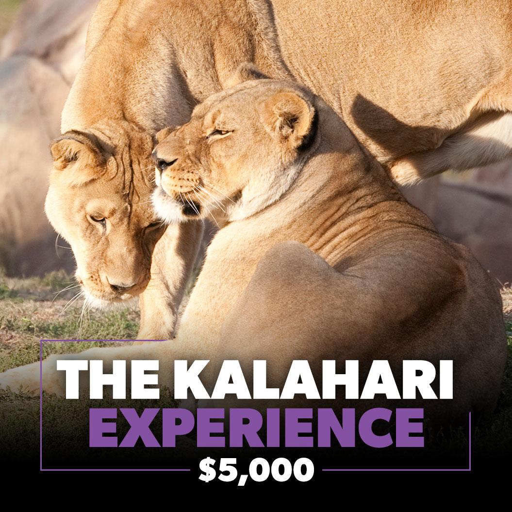 Zoo Pride KALAHARI